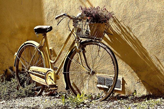 jízdní kolo s kytkou