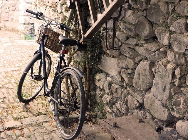 kolo u žebříku